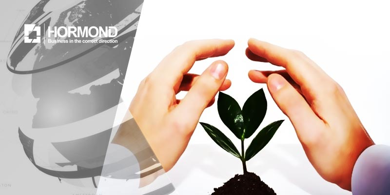 توسعه کسبوکارهای نوین